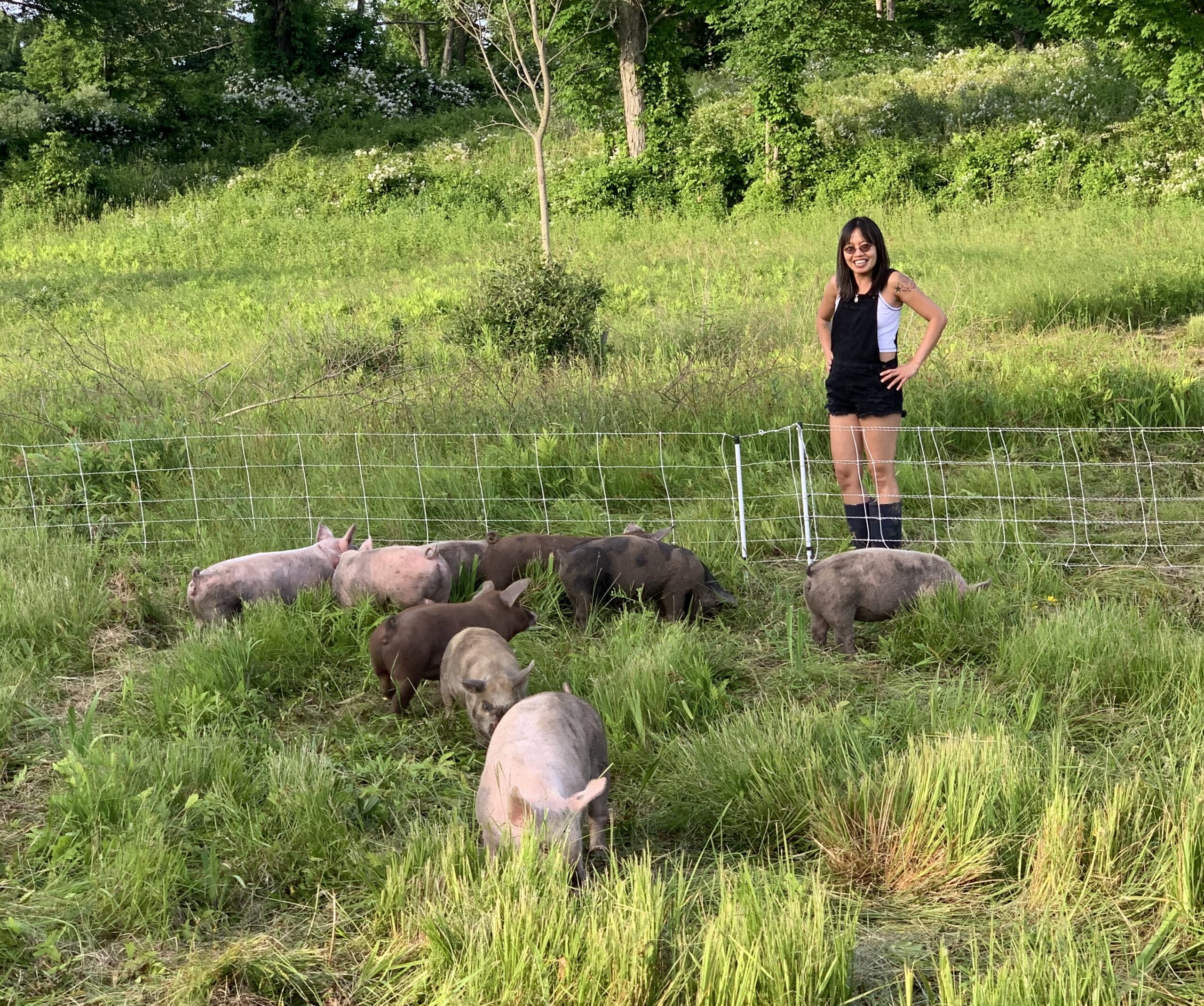 farmer anh watches over her flock