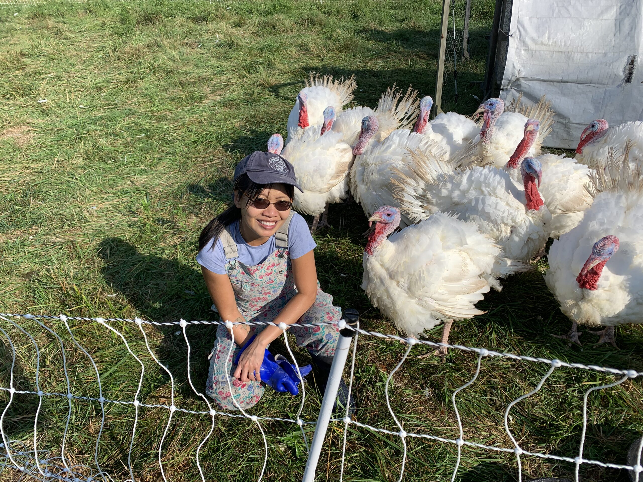 Anh with her turkeys